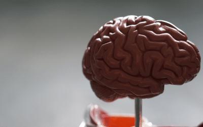 6 gatilhos mentais poderosos para aumentar suas vendas